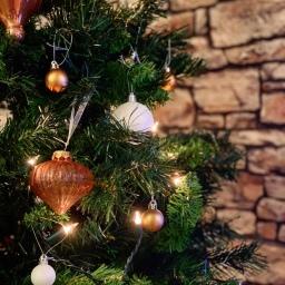 12 RECIPES FOR CHRISTMAS